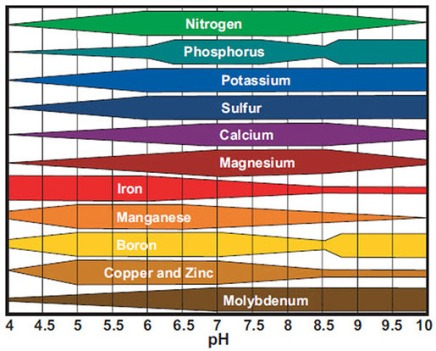 ph-nutrient-chart.jpg
